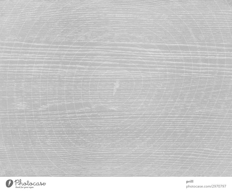 wooden surface Grain Flat (apartment) Decoration Furniture Nature Forest Wood Line Old Gray White Arrangement Quality Wood grain Texture of wood wood surface