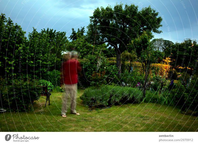 5000 Movement blink Multicoloured Dynamics Fantasy Fantasy literature Glittering Garden Grass Sky Heaven Irritation Garden plot Art Light Visual spectacle