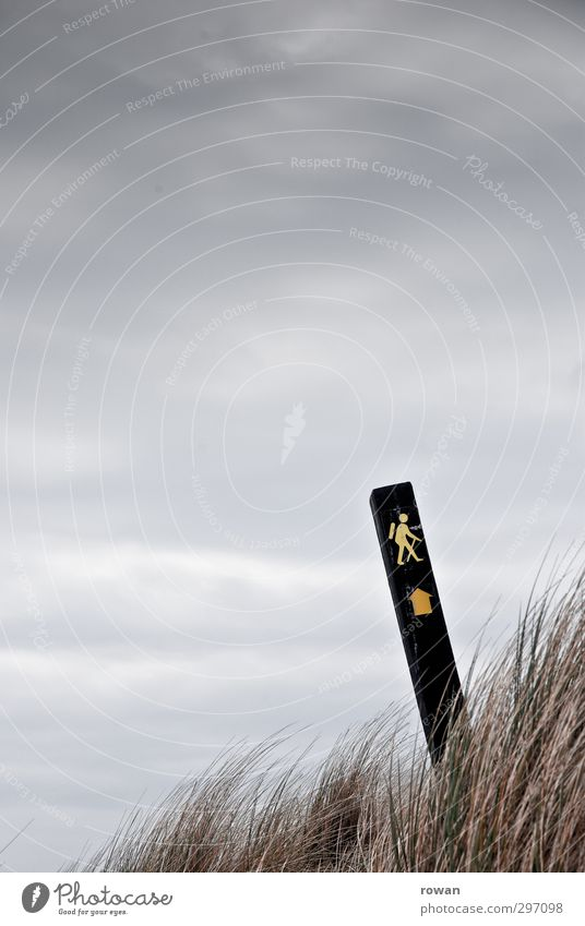 footpath Sports Fitness Sports Training Hiking Cold Footpath Grass Tuft of grass Arrow Signs and labeling Clue Signage Symbols and metaphors Forwards Clouds