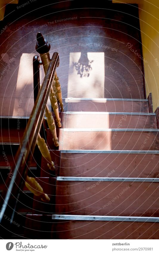 Staircase with flower pot Stairs Landing Descent Go up Window Handrail Banister Apartment house Deserted Town house (City: Block of flats) Level Copy Space