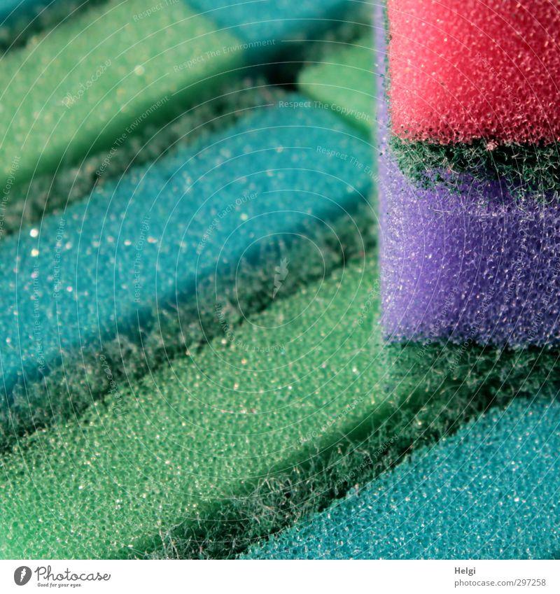 What a shame. Spring cleaning... Sponge Plastic Lie Esthetic Exceptional Simple Clean Blue Green Violet Pink Determination Cleanliness Effort Bizarre Uniqueness