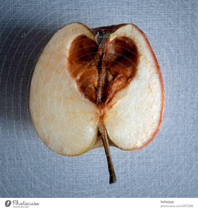heartache Food Apple Sign Heart Love Housing Putrefy Betray Heart-shaped Inedible Vitamin Healthy Old Heart attack Lovesickness Illness Gray (horse) Parasite