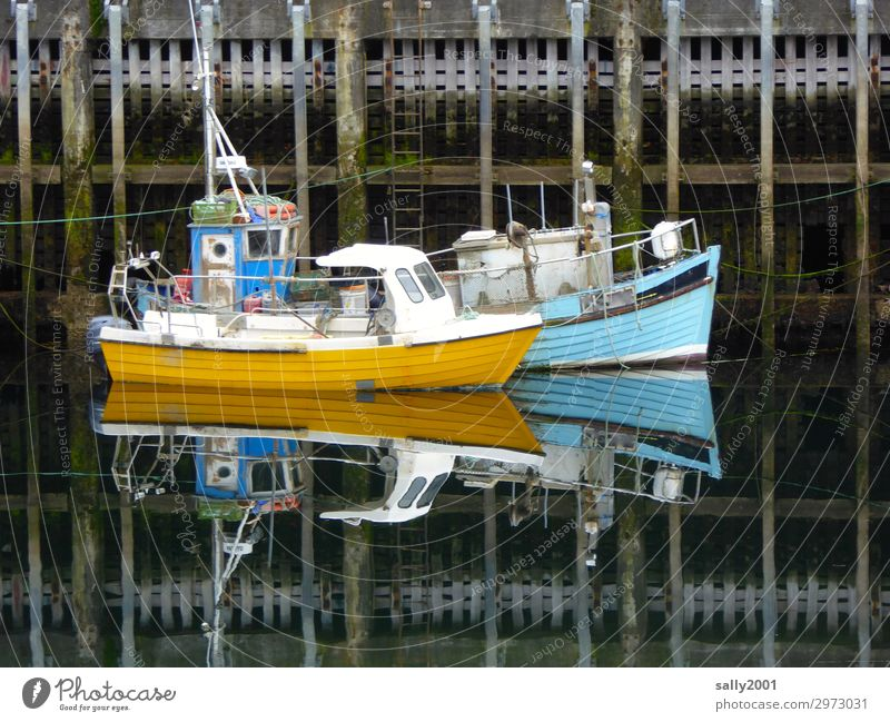 Quiet in the harbour... Navigation Fishing boat Motorboat Harbour Firm Together Maritime Blue Yellow Serene Patient Calm Break Fishery 2 Small Drop anchor