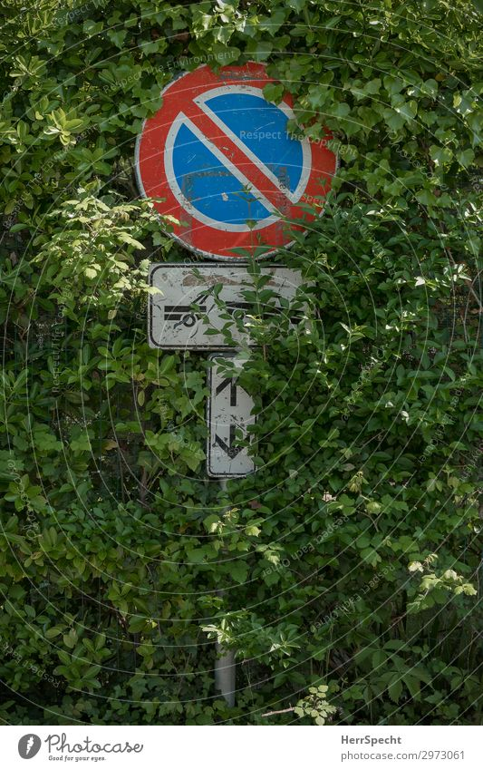 waxing in or towing off Nature Plant Bushes Foliage plant Transport Road traffic Motoring Road sign Metal Sign Signage Warning sign Natural Wild Green Growth