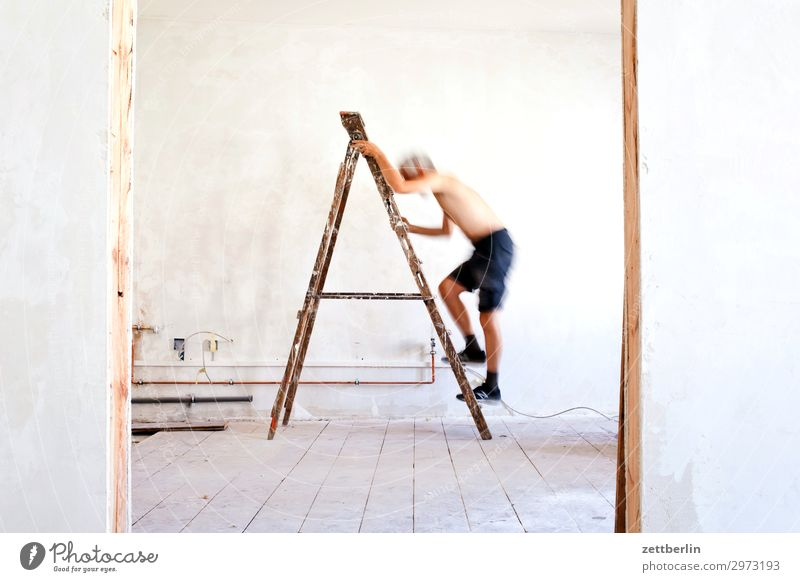 Human being Man Wall (building) Wall (barrier) Living or residing Flat (apartment) Room Door Construction site Climbing Career Ladder Redecorate Old building
