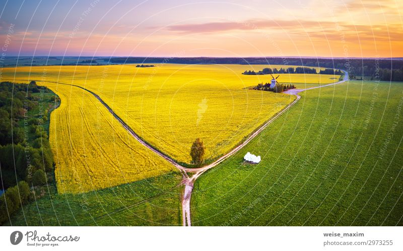 Old windmill in canola Flowering Field at spring sunrise Beautiful Summer Industry Environment Nature Landscape Plant Earth Sky Clouds Horizon Sunrise Sunset