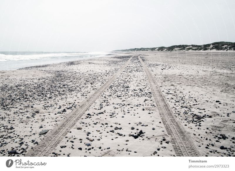 Keep going, keep going! Vacation & Travel Environment Nature Landscape Sand Sky Beach North Sea Denmark Water Esthetic Gray Emotions Loneliness Dune Skid marks