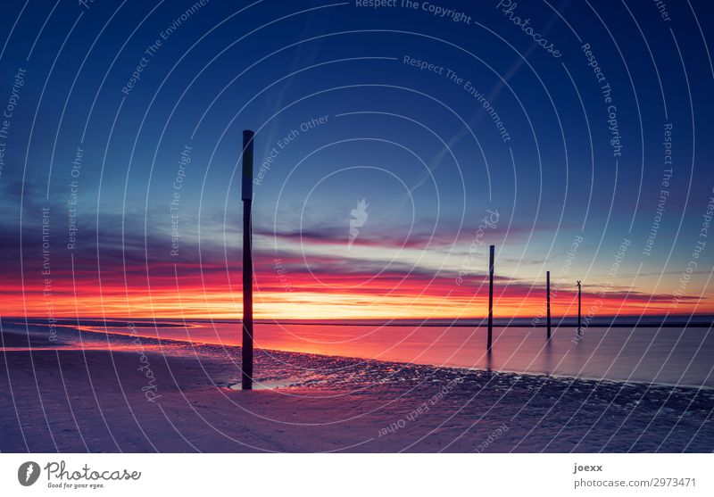 Sunset on a wide North Sea beach with four wooden piles St. Peter-Ording Summer vacation Ocean Vacation & Travel Twilight Evening Exterior shot Maritime