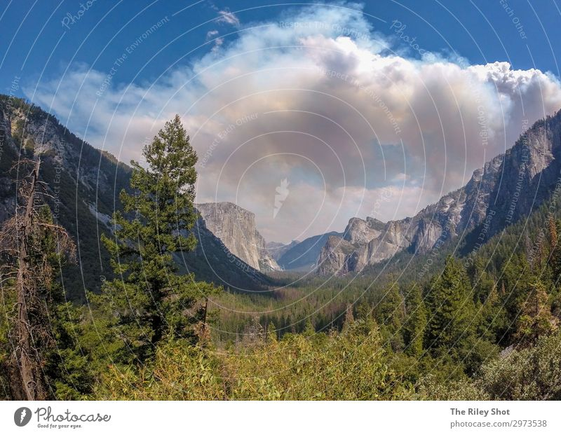 Yosemite National Park Sky Vacation & Travel Nature Summer Blue Colour Beautiful Green Landscape Sun Tree Clouds Forest Mountain Healthy Environment