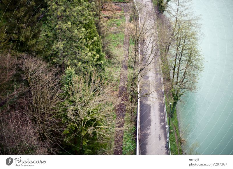 BirdPerspective Environment Nature Park Forest River bank Natural Green Footpath Colour photo Exterior shot Deserted Day Bird's-eye view