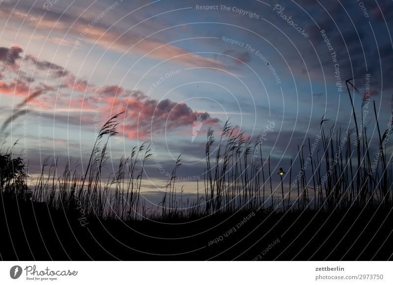 Sky Vacation & Travel Nature Heaven Clouds Travel photography Far-off places Dark Grass Tourism Island Longing Baltic Sea Street lighting Lantern Blade of grass
