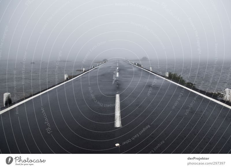 road into nothing Environment Water Autumn Bad weather Storm Fog Rain Transport Traffic infrastructure Motoring Street Overpass Emotions Wanderlust Loneliness