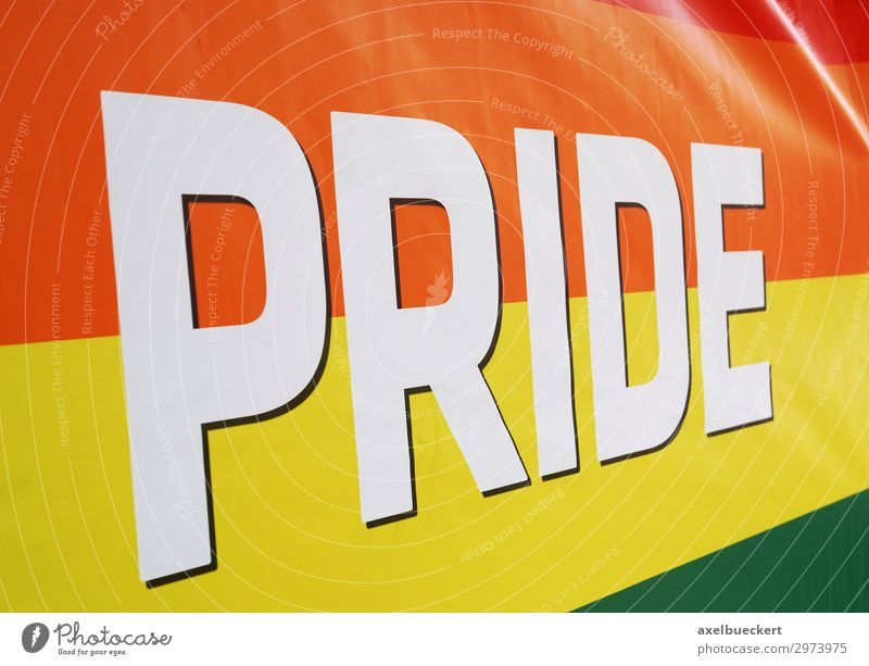 Lifestyle Feasts & Celebrations Party Sign Symbols and metaphors Flag Event Homosexual Pride Sexuality Parade Alternative Human rights Prismatic colors