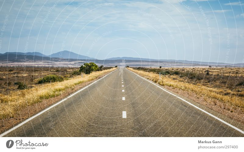 Sky Vacation & Travel Summer Landscape Clouds Far-off places Street Grass Movement Horizon Travel photography Driving Hill Infinity Dry Asphalt