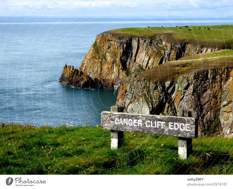 from here on it gets dangerous... Nature Landscape Beautiful weather Meadow Coast Ocean Irish Sea Scotland Cow Herd Signage Warning sign Far-off places Infinity