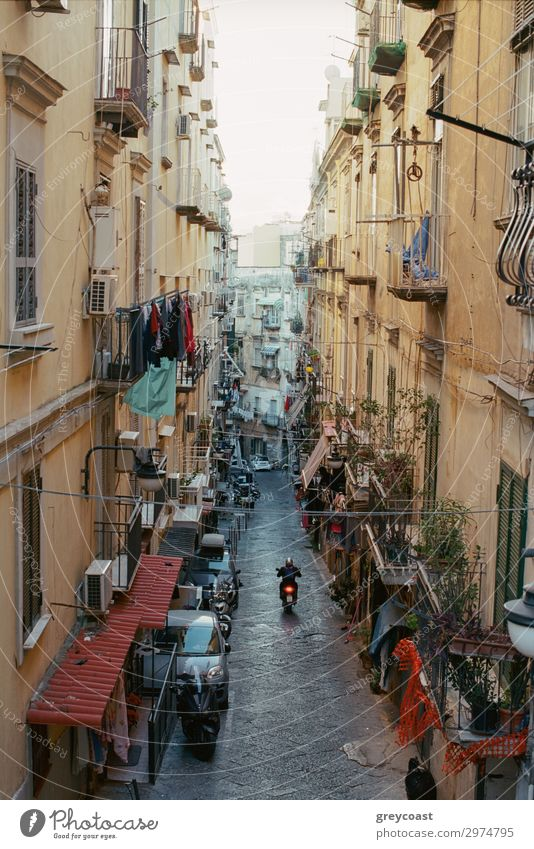 Narrow street in Naples with old houses, Italy. Motorbike driving along the alleyway. Linen hanging on the balconies House (Residential Structure) Man Adults