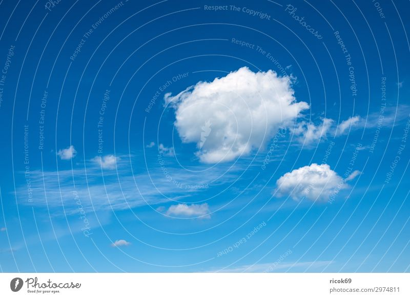 White clouds in the blue sky Environment Clouds Spring Climate Weather Blue Colour Idyll Sustainability Nature Calm Sky Cirrus cirrostratus cloud Atmosphere