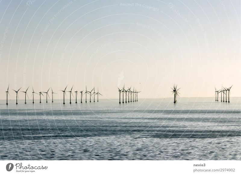 Blue Water Ocean Coast Movement Horizon Waves Air Energy industry Technology Power Wind Industry Electricity Elements