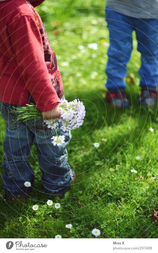 Human being Child Summer Plant Flower Meadow Emotions Grass Spring Small Blossom Legs Garden Friendship Family & Relations Infancy
