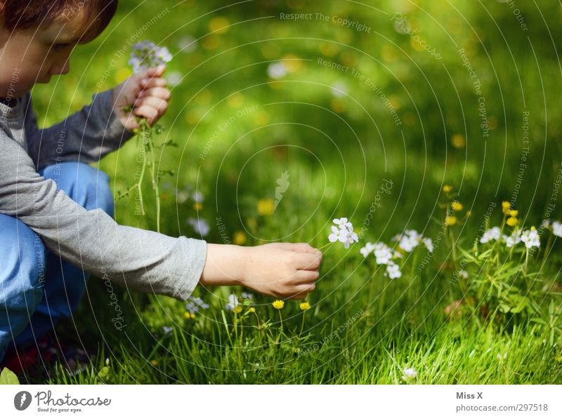 And another flower for Mama Garden Valentine's Day Mother's Day Human being Child Toddler Infancy 1 1 - 3 years 3 - 8 years Spring Summer Flower Grass Blossom
