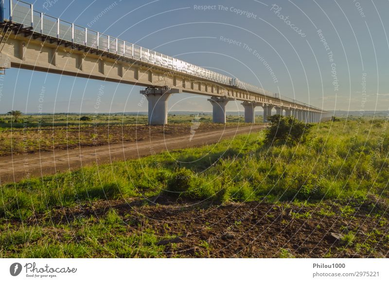 View of the viaduct of the Nairobi railroad to mombassa Park Train station Bridge Architecture Transport Street Highway Overpass Railroad Modern Green Kenya