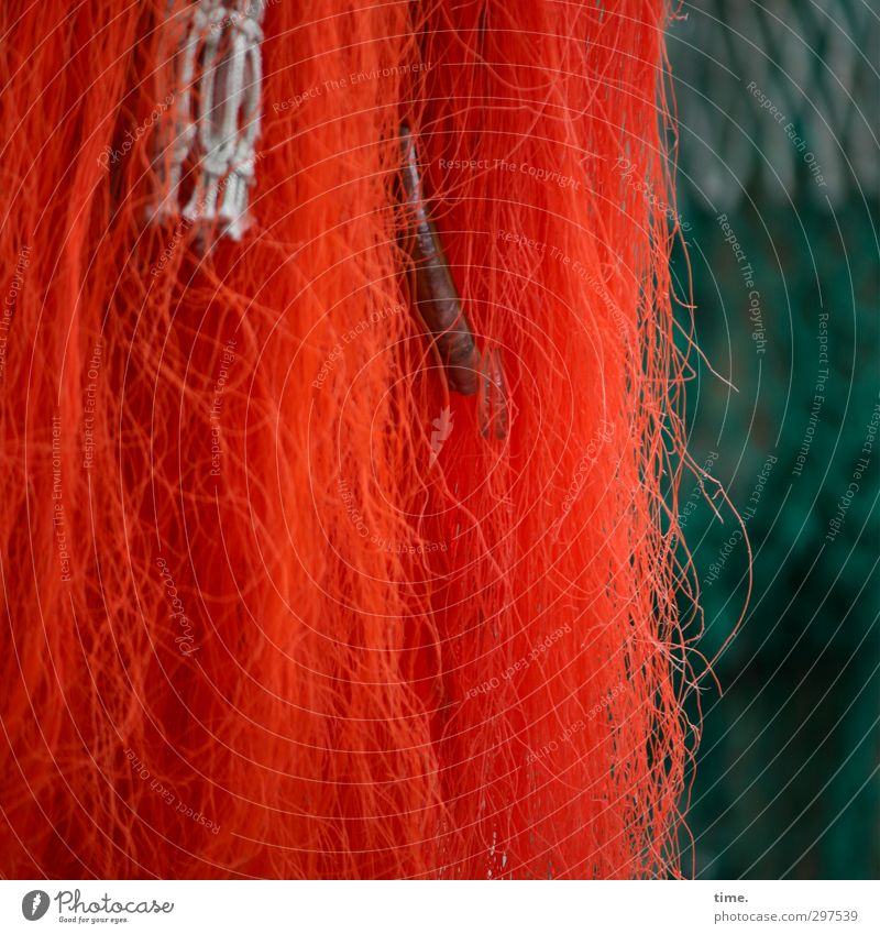 Rømø | RedGreenMurks with by-catch Work and employment Fisherman Fishery Fishing net Mussel Plastic Knot Net Network Hang Hip & trendy Design Serene Accuracy