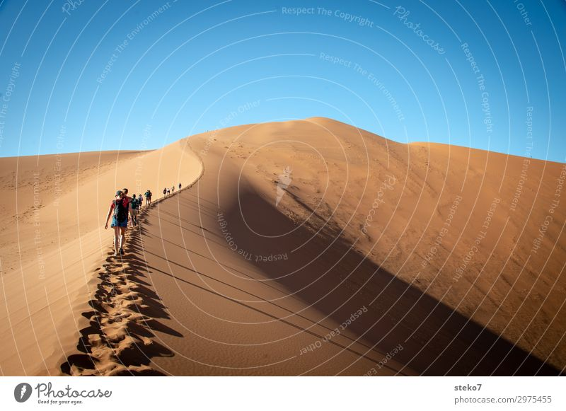 dune hike Group Sand Warmth Drought Desert Namib desert Hiking Together Hot Bright Blue Yellow Thirst Adventure Tourism Vacation & Travel Lanes & trails