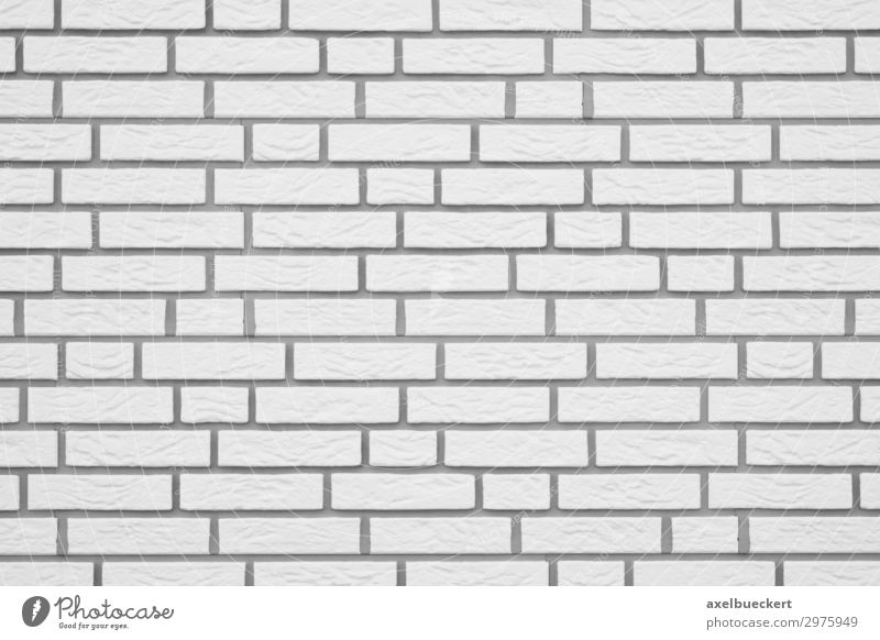Clinker Wall Background white Wall (barrier) Wall (building) Facade White Background picture Horizontal Architecture Part of a building Brick Copy Space
