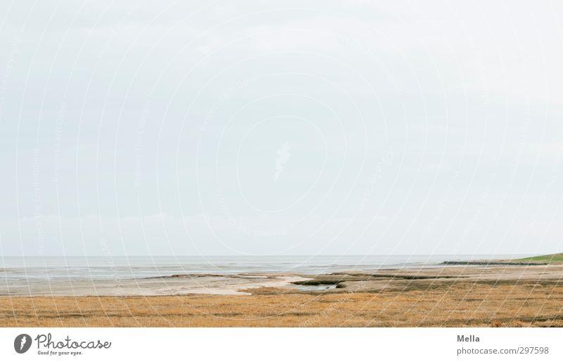 Sky Nature Water Ocean Landscape Calm Environment Far-off places Grass Freedom Coast Bright Horizon Air Natural Earth
