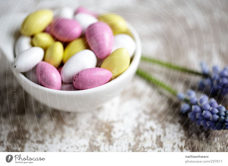 Blue Beautiful White Colour Joy Yellow Natural Pink Contentment Fresh Nutrition Cute Simple To enjoy Round Desire