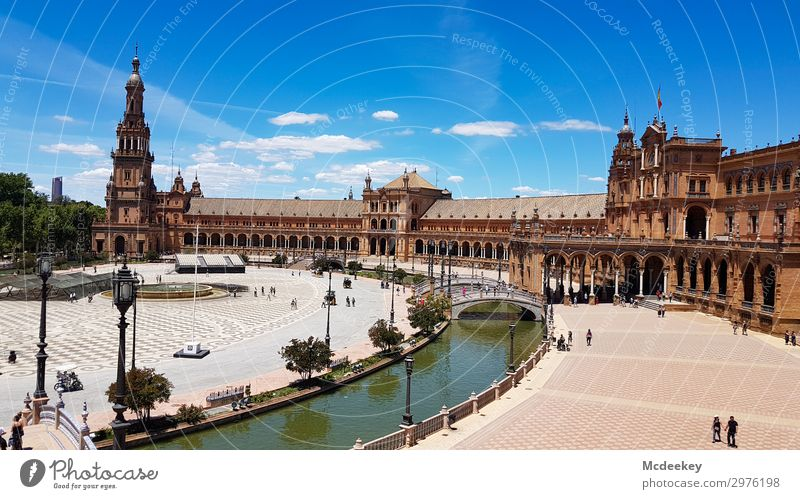Plaza de España (Seville) Animal Sky Clouds Summer Beautiful weather Warmth Plant Tree Flower Park Andalucia Spain Europe Town Downtown Old town Populated