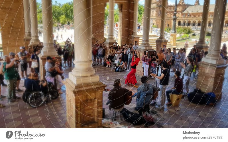 Flamenco - Plaza de España (Seville) Human being Woman Adults Crowd of people Andalucia Spain Europe Town Downtown Old town Populated Park Places