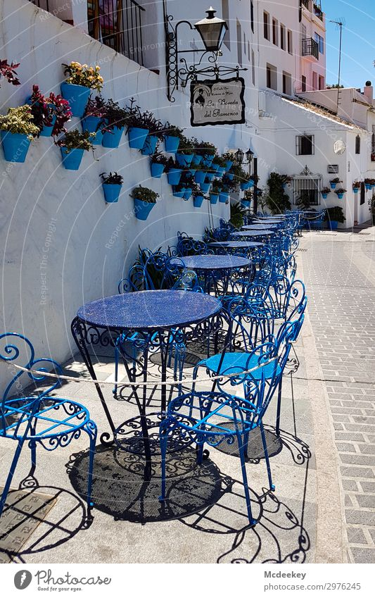 mijas Summer Beautiful weather Plant Flower Mijas Andalucia Spain Europe Village Small Town Downtown Old town Populated House (Residential Structure) Places
