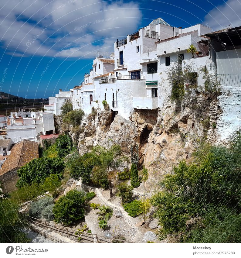 Cómpeta Nature Landscape Sky Clouds Summer Beautiful weather Plant Tree Flower Bushes Rock Andalucia Spain Europe Village Small Town Old town