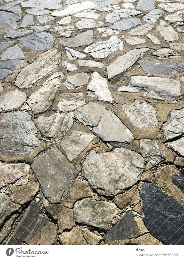 Stony is the way that lies before us ... Lanes & trails Paving tiles Stone Lie Elegant Many Together Life Unwavering Esthetic Relationship Design Uniqueness