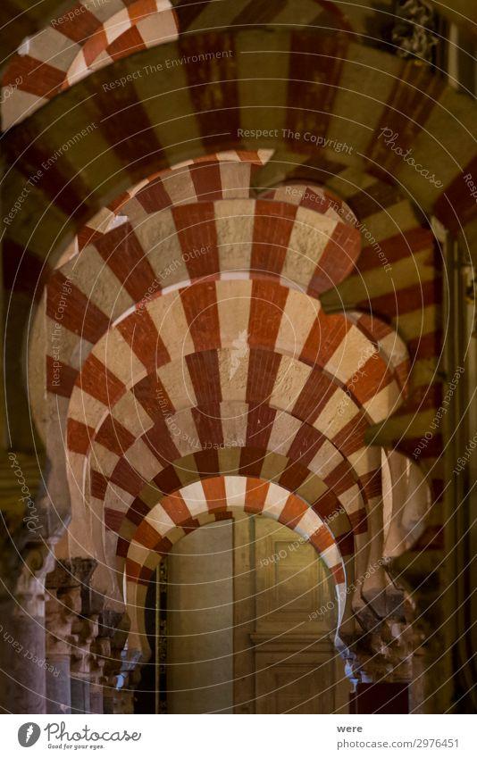 Religion and faith Church Culture Tourist Attraction Cordoba Mezquita