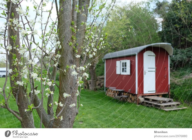 holidays Relaxation Calm Vacation & Travel Tourism Trip Adventure Camping Summer Garden Red Camping site Meadow Spring Tree Saale Vacation home Beautiful Idyll