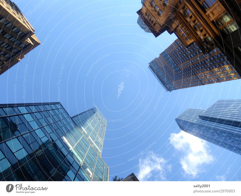 worm's-eye perspective... Sky Beautiful weather New York City USA Americas Skyline House (Residential Structure) High-rise Manmade structures Architecture