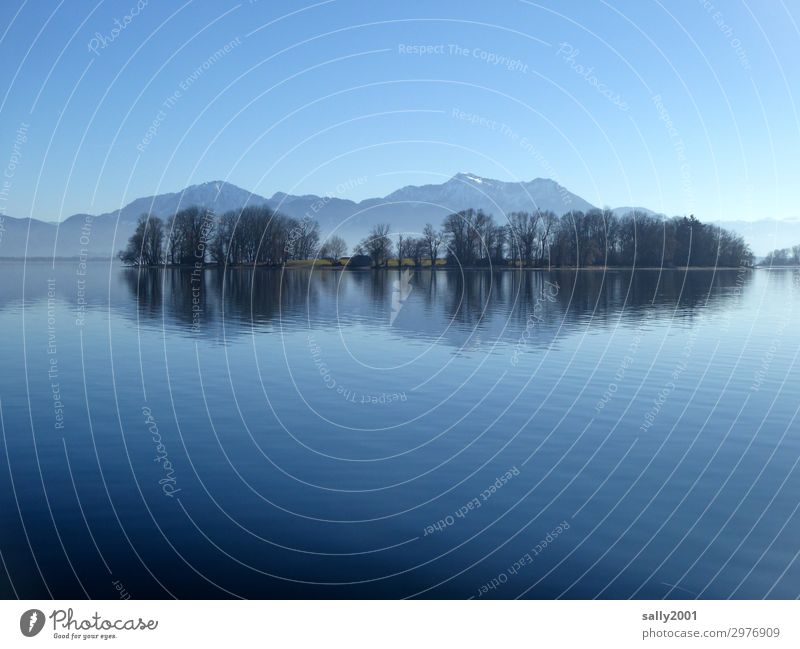 silent... Nature Cloudless sky Winter Beautiful weather Tree Mountain Alps camping wall Lakeside Island Lake Chiemsee Famousness Cold Natural Serene Calm