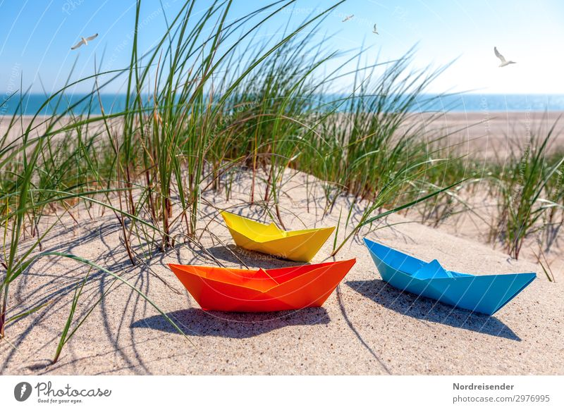 Vacation & Travel Summer Water Sun Ocean Relaxation Beach Grass Tourism Playing Sand Joie de vivre (Vitality) Beautiful weather Summer vacation Baltic Sea