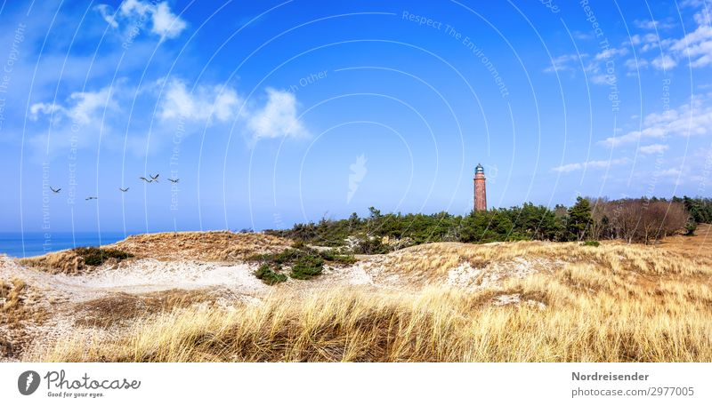 Lighthouse Darßer Ort at the Baltic Sea Panorama (View) Contrast Copy Space top Deserted Exterior shot Marram grass Fischland Prerow Colour photo dune Darss