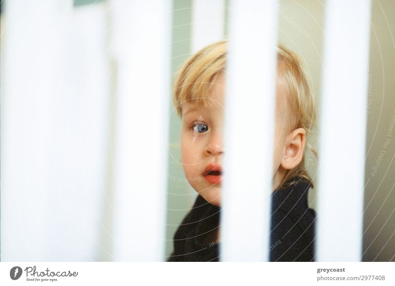 Close-up shot of blue-eyed baby girl with fair hair, view through the crib bars Face Children's room Human being Feminine Baby Toddler Infancy 1 0 - 12 months