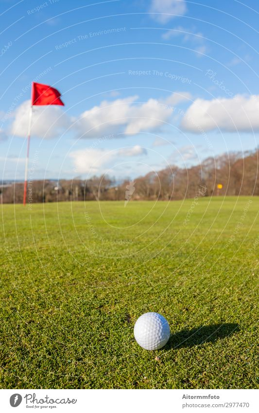 Golf green Lifestyle Beautiful Relaxation Leisure and hobbies Playing Vacation & Travel Summer Sun Club Disco Sports Success Nature Landscape Sky Tree Grass