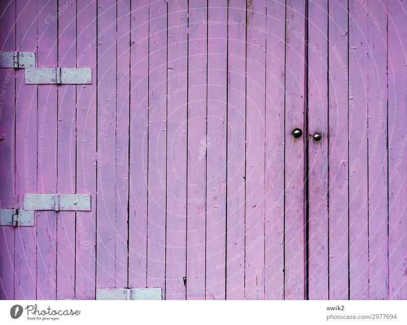 Blue was all Gate Dye Wood Metal Gloomy Violet Hinge Wooden board Wooden gate Unicoloured Repeating Bright Colours Colour photo Exterior shot Detail