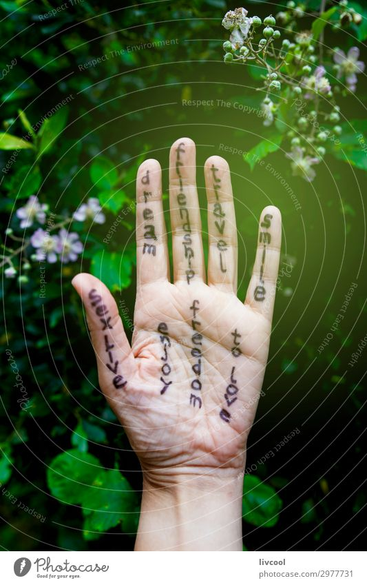 phrases with message Lifestyle Body Vacation & Travel Freedom Human being Friendship Arm Hand Fingers Art Artist Work of art Culture Nature Tree Flower Leaf