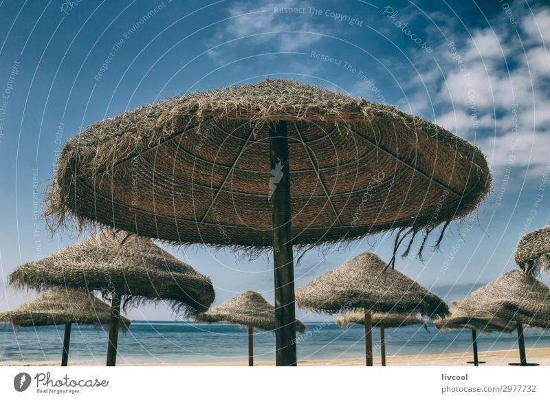 straw umbrellas, portugal Vacation & Travel Nature Summer Landscape Sun Ocean Relaxation Clouds Beach Spring Coast Tourism Trip Vantage point Europe Idyll