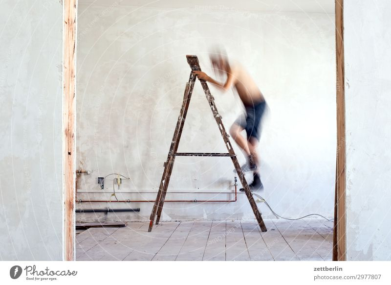Human being Man Wall (building) Wall (barrier) Living or residing Flat (apartment) Room Door Stand Construction site Climbing Career Ladder Redecorate