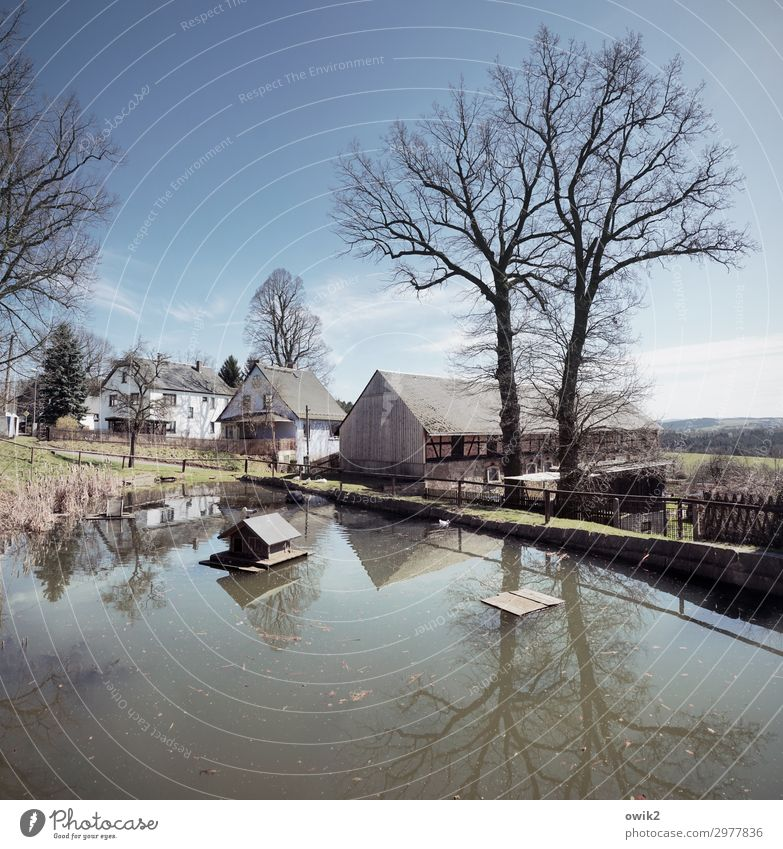 Small copy Sky Clouds Horizon Beautiful weather Tree Pond village pond Thuringia Germany Village Populated House (Residential Structure) Detached house Hut Barn