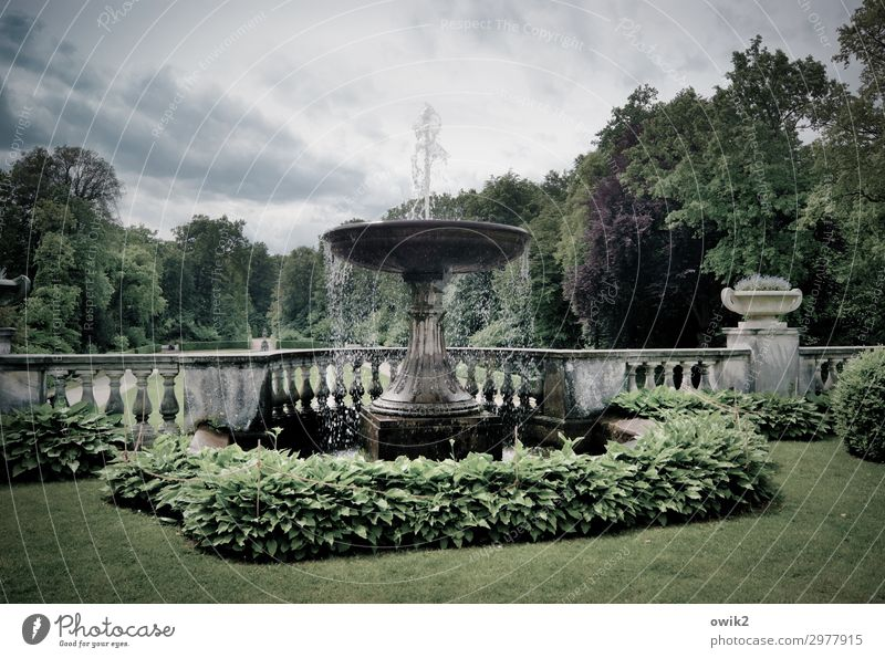 fizzy Work of art Architecture Environment Nature Landscape Water Clouds Summer Tree Grass Park Chateau Sanssouci Potsdam Germany Fountain Handrail