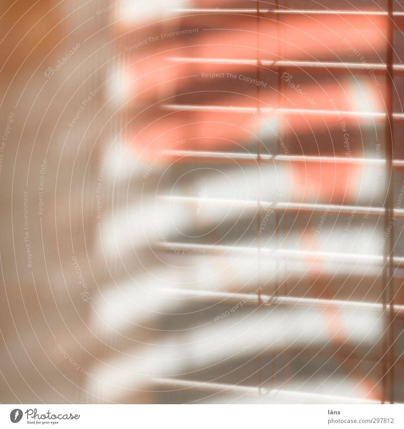 Window Moody Orange Design Hang Curtain Shaft of light Venetian blinds Screening